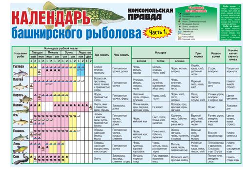 календарь рыболовный по пскову