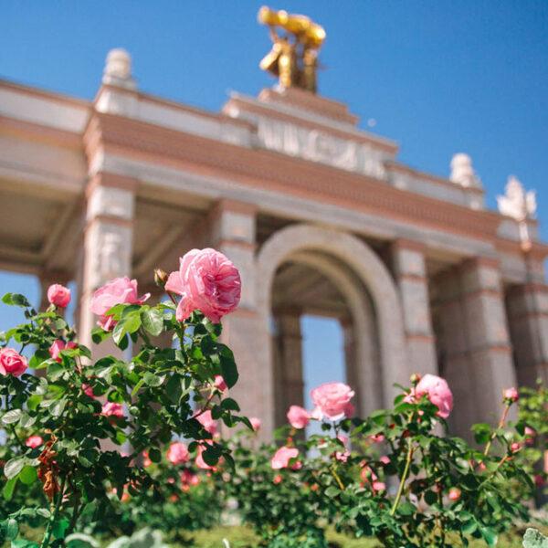 Выставка роз на ВДНХ