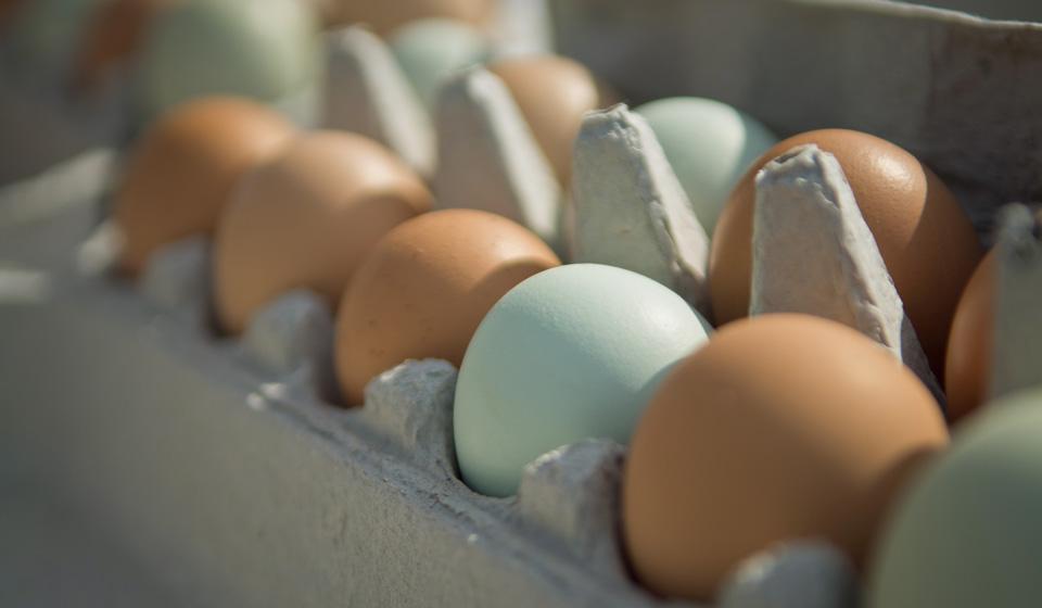 К чему снятся куриные яйца по соннику: толкование снов про ...