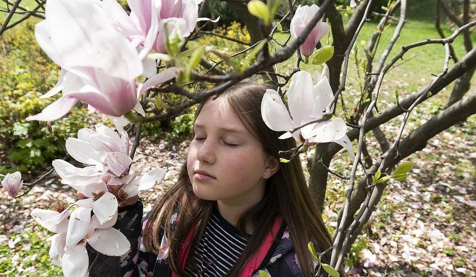 Приметы весны 2020 для детей: как определить по природе, что нас ждет весной