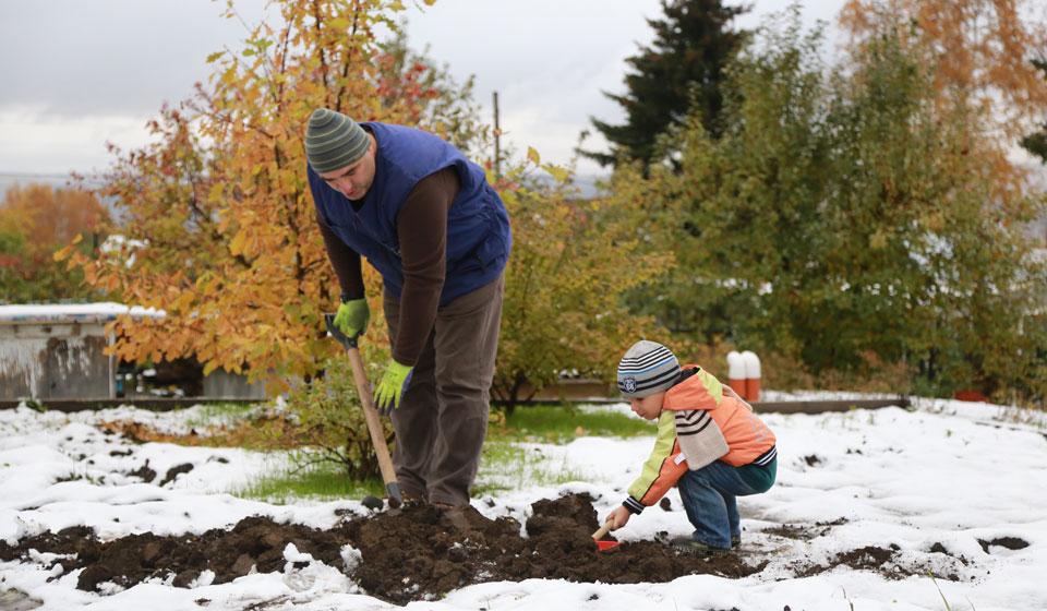 Картинки по запросу Лунный календарь садоводов и огородников на ноябрь