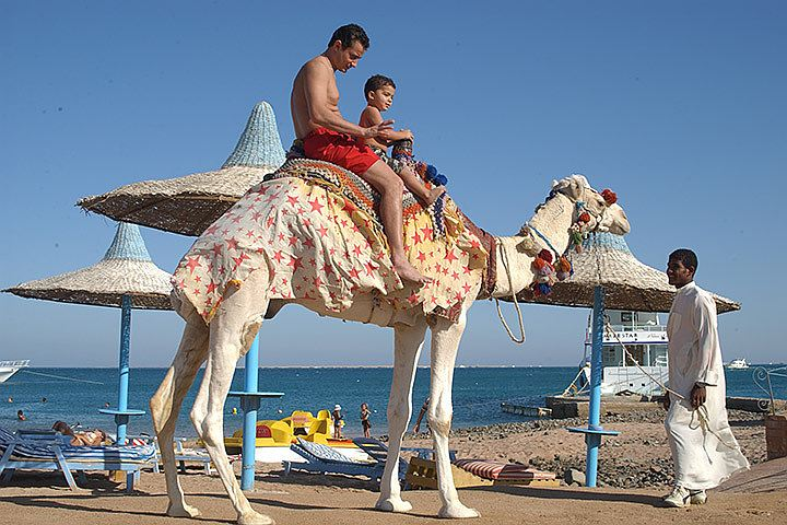 Картинки по запросу возобновление чартеров в египет, когда полетят, когда откроют египет для туристов из россии