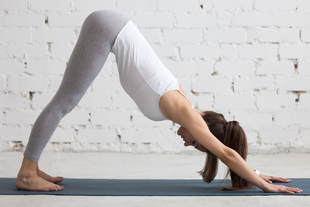 Поза собаки мордой вниз в йоге: как правильно делать, польза и вред  упражнения