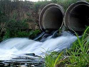 Гринпис проверил речные воды Ярославской области.