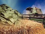Инвестирую в сельское хозяйство