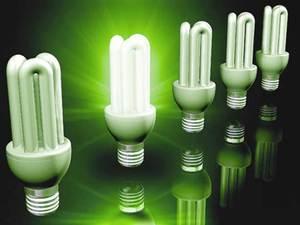 В Приморье энергосберегающие лампочки подвергнут переработке.