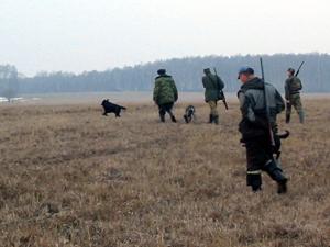 На охоту трое друзей отправились в заповедник.