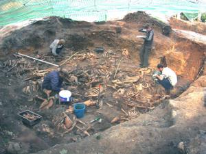 На Бородинском поле продолжаются археологические раскопки. Застройка может им повредить