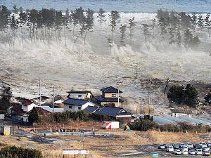 Число жертв землетрясения в Японии до сих пор не подсчитано