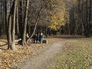 Москвичи скоро потянутся погулять в парки