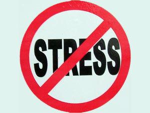 Когда все в жизни хорошо, можно устроить себе небольшой стресс - как душ для мозгов.