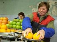 Как получить предпринимательский патент в Молдове? Где узнать о социальных пособиях?