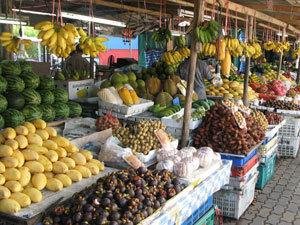 Аграриям пообещали полноценную продуктовую логистику.