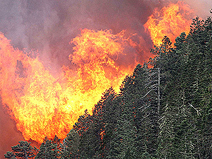 Количество стихийных бедствий на планете Земля утроилось