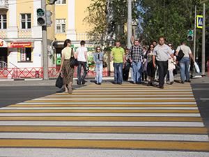 В Ярославле может появится еще больше цветных зебр.