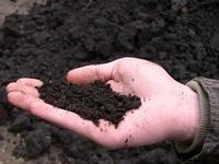 В Ярославской области создается кластер производства биотоплива
