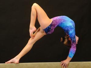 ...художественной гимнастике начнется первый открытый областной турнир...