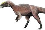 Некоторые тиранозавры были белыми и пушистыми