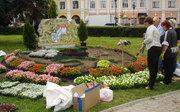 В центре Ярославля появились слон, бык и герб Германии