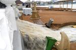 В Дивноморском потоком снесло рынок, а в Геленджике люди бросают свои машины, лишь бы спастись