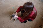 Живодерка, мучавшая щенка на фотосессии: «Делать такие снимки вполне уместно»