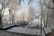 В Новосибирске разыскиваются похитители норковых шуб