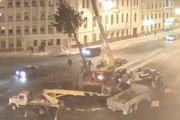 Прокуратура Пскова: искусственная елка в целости и сохранности, мы проверили!