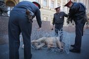 В Петербурге начался суд над «голым художником»