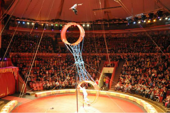 из-под купола цирка упал