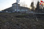 От урагана в Новосибирской области пострадали две девушки: на них упали деревья