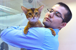 Экономист из «Росатома» бросил работу и открыл гостиницу для кошек