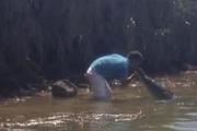 Костариканец зашел в воду, чтобы расцеловаться с огромным крокодилом