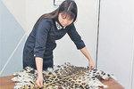 На браконьеров открыта охота
