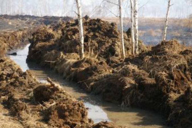 Горящие торфяники продолжают тушить в Иркутской области