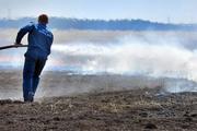 Пожары в Брянской области поднимают чернобыльскую радиацию
