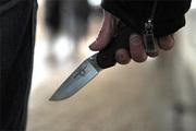 В Подмосковье восьмиклассник зарезал охранника школы