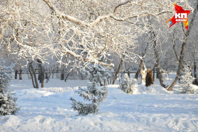 На новый год погода в татарстане будет