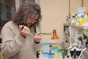 Микробиолог Константин Северинов: Самый главный орган человека - это сообщество микробов внутри нас