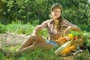 Хотите  собрать богатый урожай? Покупайте «Зеленый номер» «Комсомолки»!