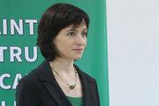 Майя Санду — министр, которого Молдова не заслуживает?