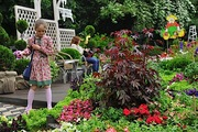 5 главных июльских забот цветовода
