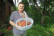 5 июльских советов от Андрея Туманова