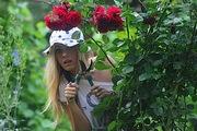 Как бесплатно раздобыть цветы для дачи и правильно их размножить