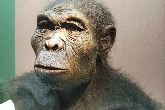 Стойбище древнего человека 100 лет картинки