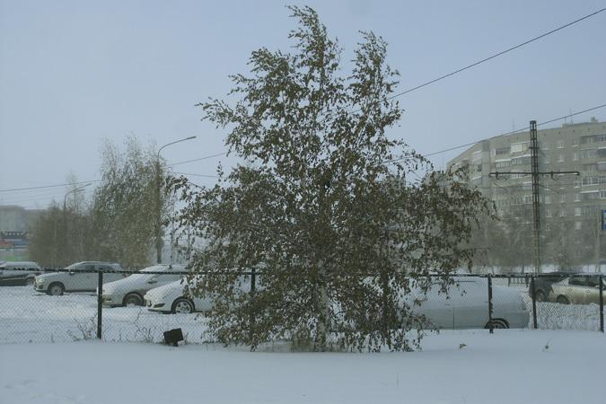 Погода с самарское азовский р-он ростовская обл