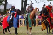 Рыцарские бои в Мирском замке превратят в телешоу