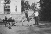 1914 год. Царское село. Цесаревич Алексей вместе со своим телохранителем, боцманом Деревенько и его детками.
