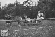 1914 год. Царское село. Цесаревич гуляет с детьми боцмана Деревенько.