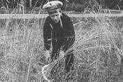 1914 год. Цесаревич в Петергофском саду жнет рожь.