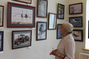 «Муравьевский парк: 20 лет спустя»